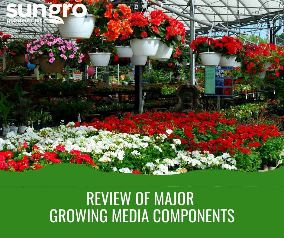 Review of Major Growing Media Components Featured Image